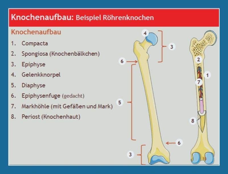 ihrarzt.de » Aktuelles